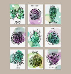 Succulents mini banners cards set vector
