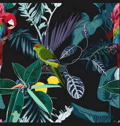 tropical night vintage wild birds and parrots vector image