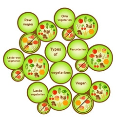 Vegetarian types infographic vector