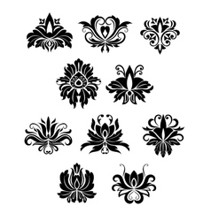 Floral design elements and flowers vector