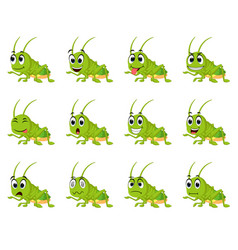 grasshopper with different facial expressions vector image