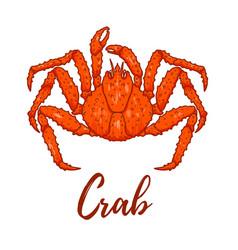 Japanese spider crab design element for logo vector