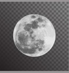 realistic gray full moon vector image