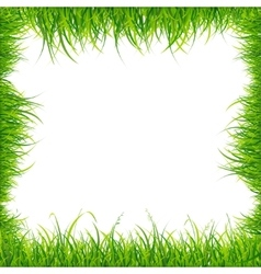 Realistic Square Green Grass Frame vector