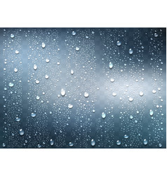 realistic water droplets on transparent window vector image