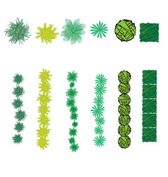 Set of bush symbols and brushes vector