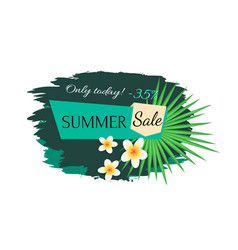 Summer sale discount banner vector