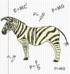 Zebra in a school notebook vector