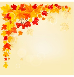 Autumn background with colorful leaves Back to vector image