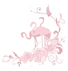 pink flamingo and roses vector image