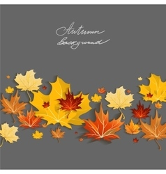 Beautiful maple leaves vector