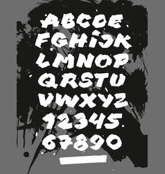 brush calligraphy hand lettering font on abstract vector image