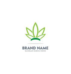 cannabis green leaf organic logo vector image