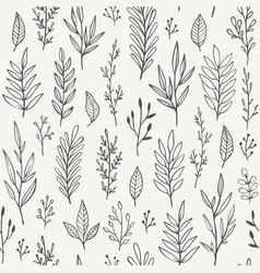 hand drawn plants branches leaves seamless vector image