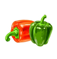 picture of bell-pepper vector image