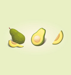 set realistic fresh avocado fruit slice and whole vector image
