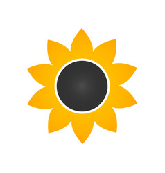 sunflower icon in flat style isolated on white vector image