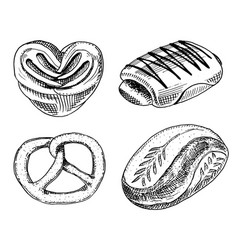 bread and pastry donut sweet bun or bagels with vector image