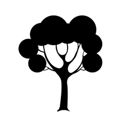 game tree isolated icon vector image