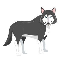 big wolf icon vector image
