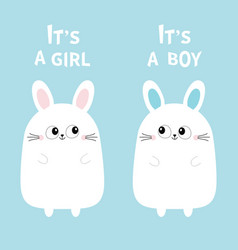 its a girl boy two cute twin bunny rabbit set vector image