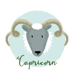 Nice capricorn horoscope sign vector image
