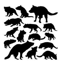 Tasmanian devil animal silhouettes vector