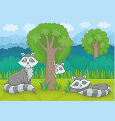 three raccoons vector image