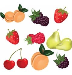 Summer fruits set vector image vector image