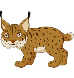 Cartoon lynx isolated on a white background vector