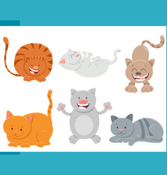cats and kittens comic characters set vector image