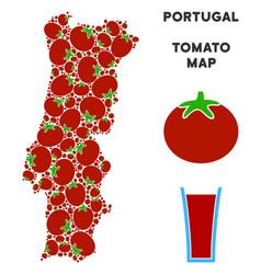portugal map composition of tomato vector image