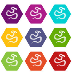 Python snake icon set color hexahedron vector