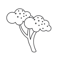 Broccoli vegetable diet nutrition outline vector