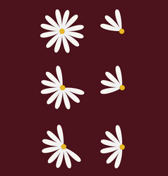 set of six daisy as pie diagrams vector image