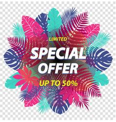 Special offer label design for poster leaflet vector