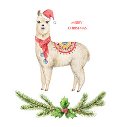 watercolor christmas card llama or alpaca vector image