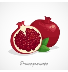 Pomegranate icon Cartoon vector image vector image