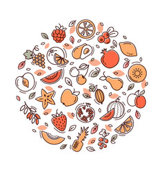 circle fruit set vector image