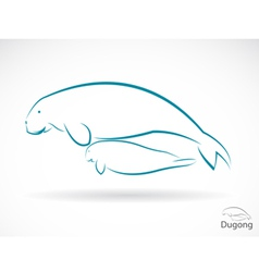 Dugong vector