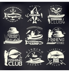 Fishing Emblem Set On Dark vector image