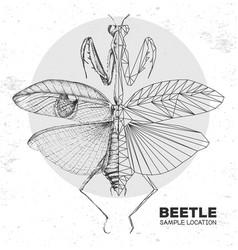 Realistic and polygonal praying mantis vector