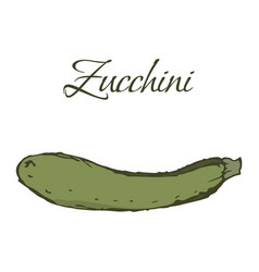 tasty veggies zucchini vector image