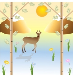 The roe in the wild nature vector