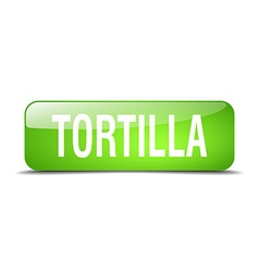Tortilla green square 3d realistic isolated web vector