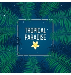 Tropical starry night paradise background template vector