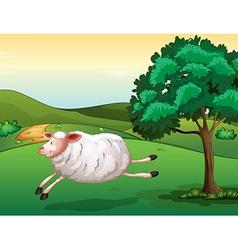 A sheep vector image vector image