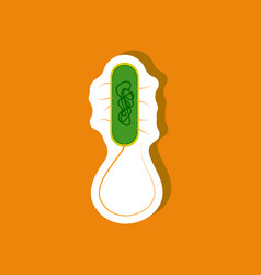 bacteria paper sticker on stylish background vector image