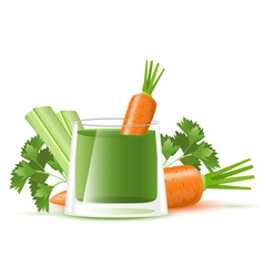 Celery juice with carrot vector image vector image