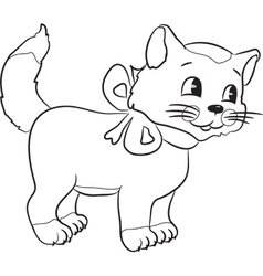 catwithribbon vector image